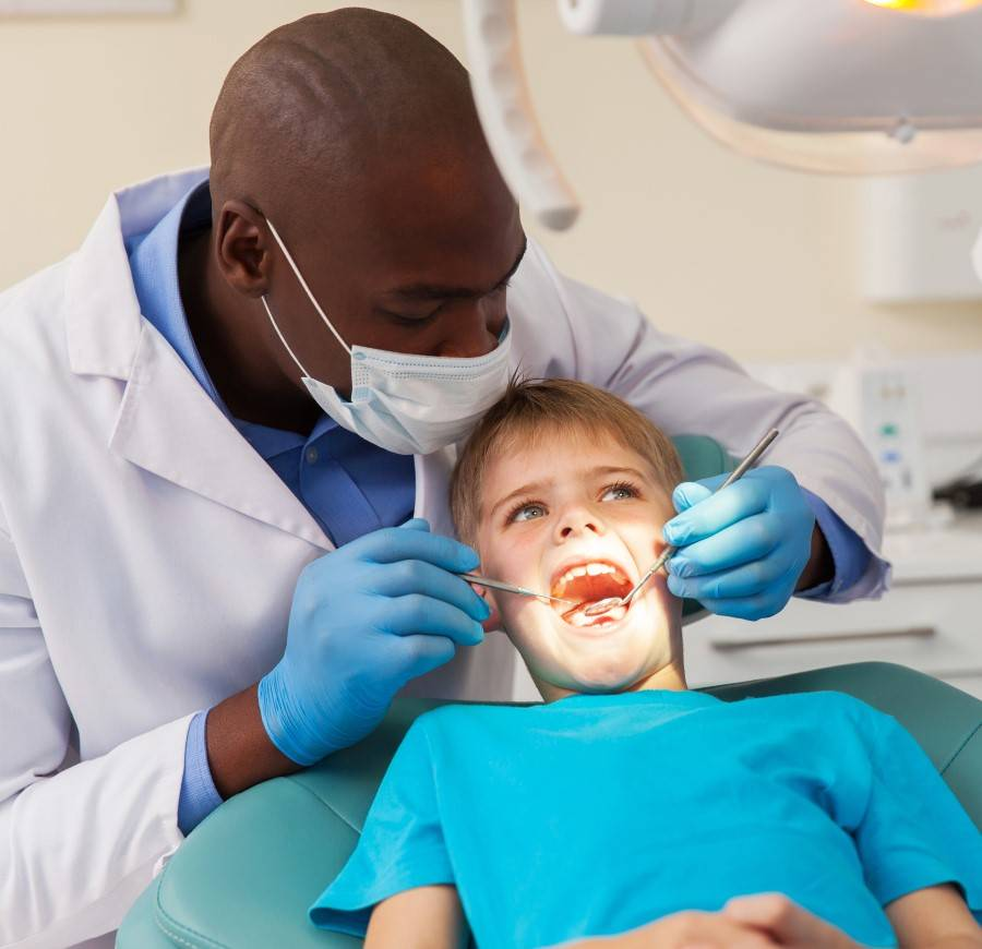 dentist resume example